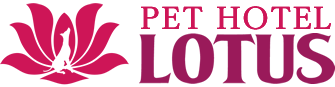 Pet Hotel Lotus is a pet (dog, cat, small animal) hotel trimming salon in Tomisato City, Chiba Prefecture.